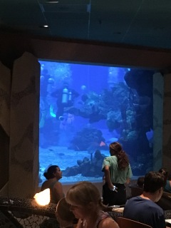 Disney Dining: Coral Reef View From Table