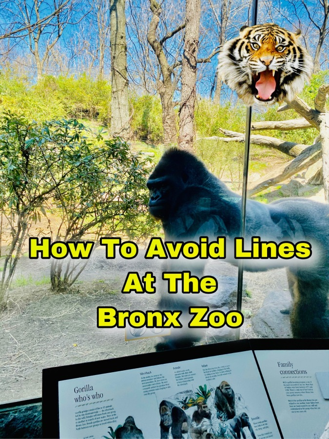 Your Bronx Zoo Itinerary