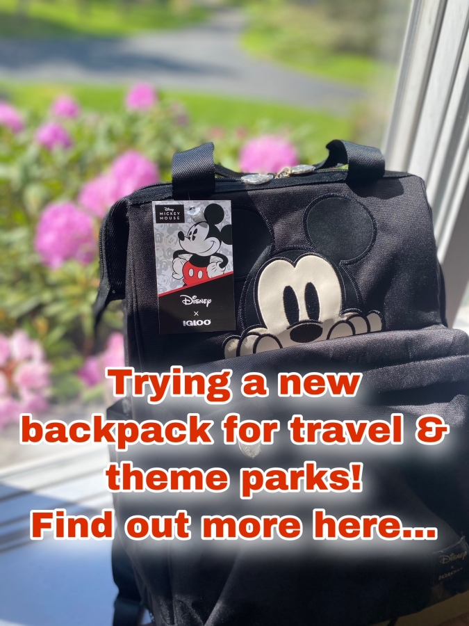 Disney Igloo Backpack – New Packing Item For ThemeParks