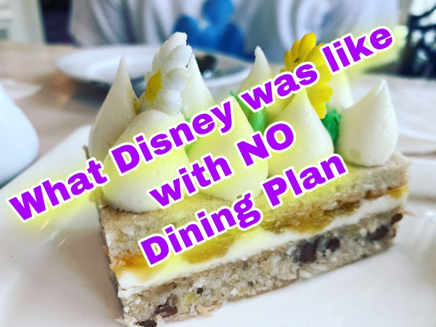 What Disney Was Like With NO DININGPLAN